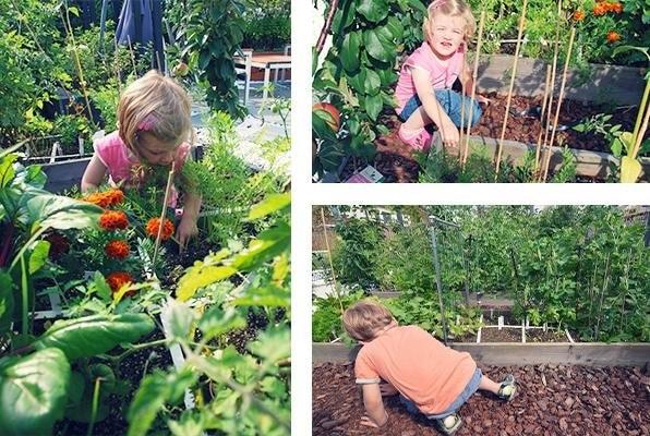 vegetable-garden-for-kids3.jpg