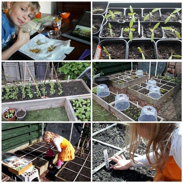 vegetable-garden-for-kids2.jpg