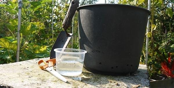 Groentes-telen-in-Makkelijke-Moestuin-gereedschap