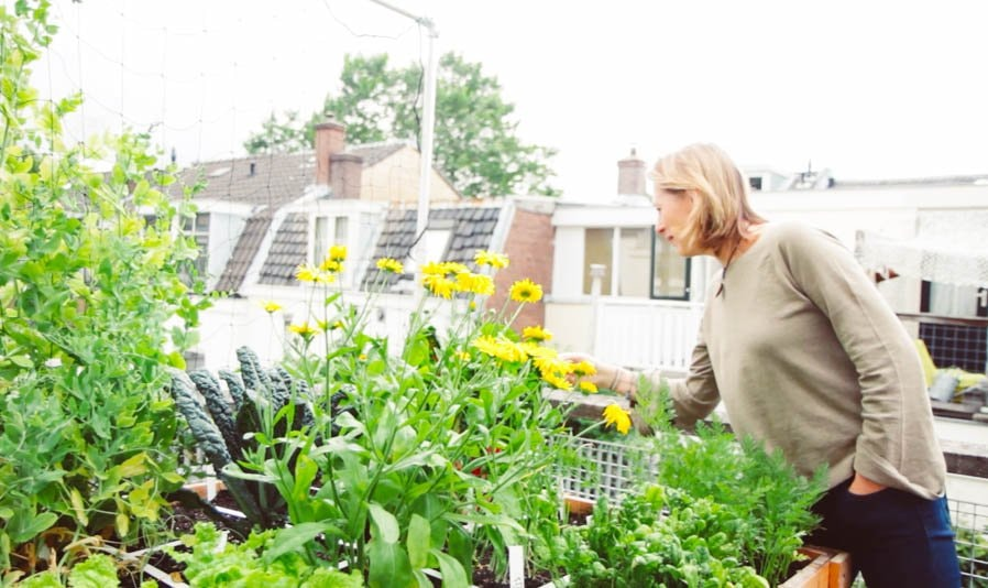 the-Planty-Gardening-Mission3.jpg