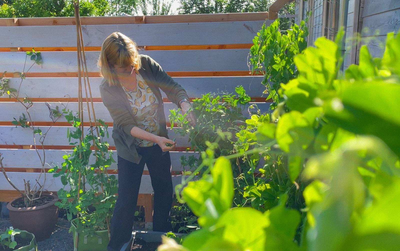 July-in-the-Planty-Garden5.jpg
