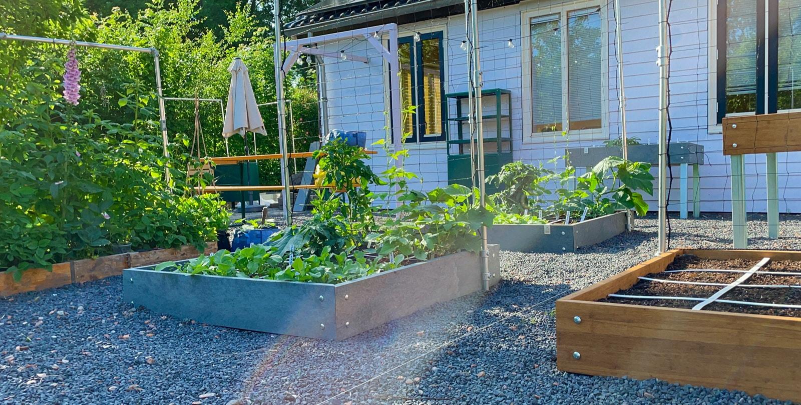 July-in-the-Planty-Garden3.jpg