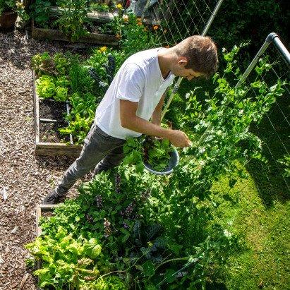 jelle-in-his-garden.jpeg