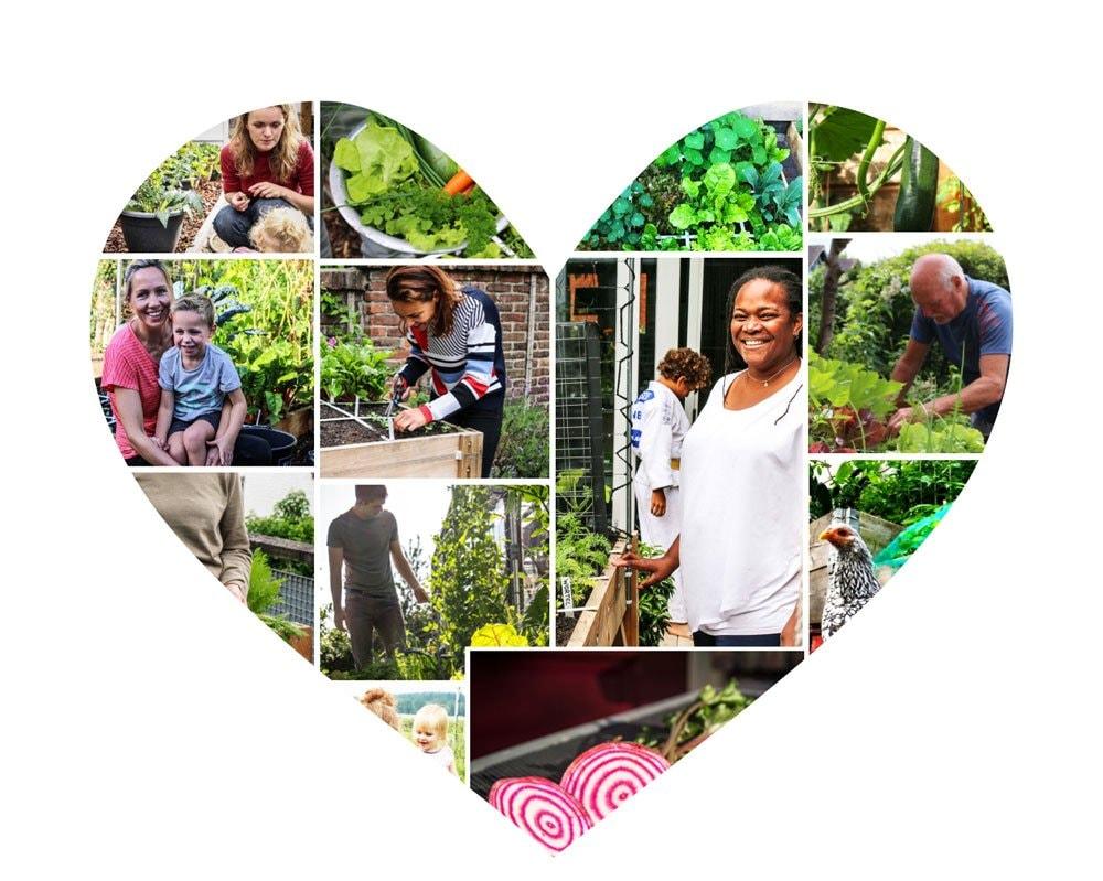 MM Planty Community