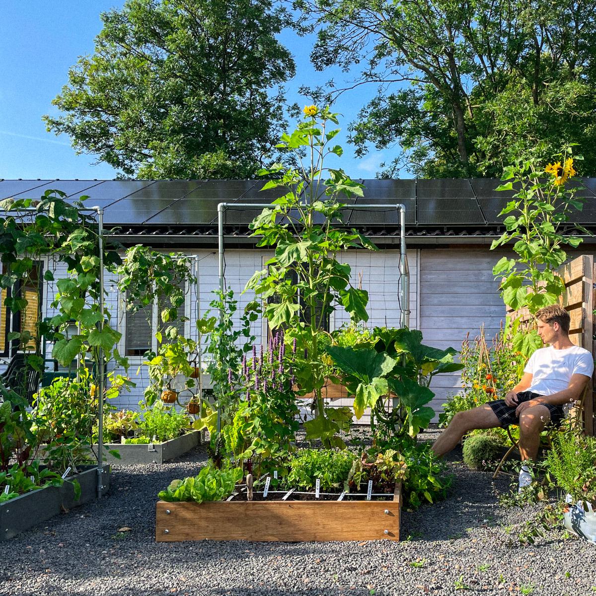 blog-1-sept-2021-tour-of-the-planty-garden10.jpg
