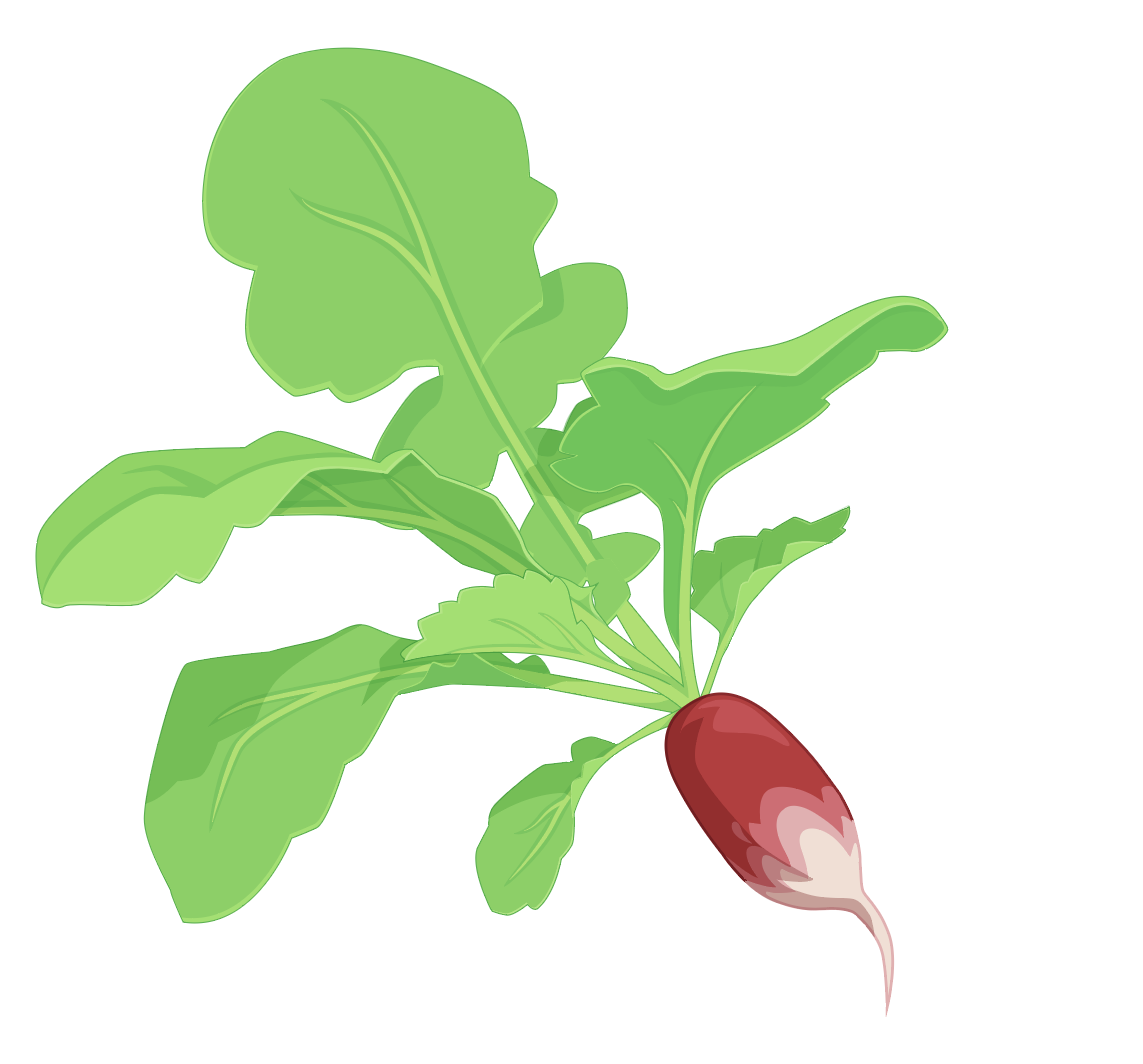 blog_september-1-the-sowing-continues4.png