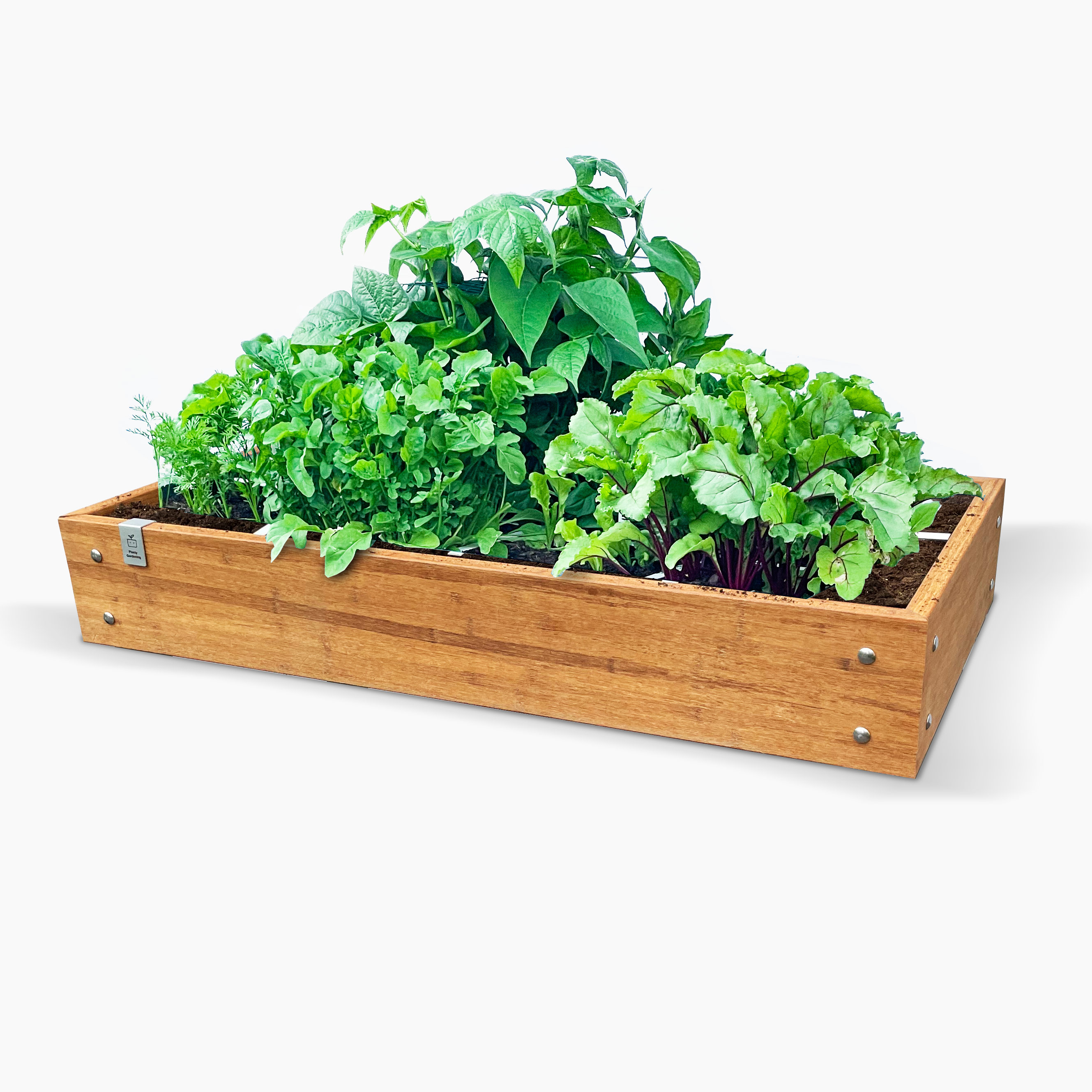 Medium-starter-kit-bamboo-garden-box-60x120_4.jpg