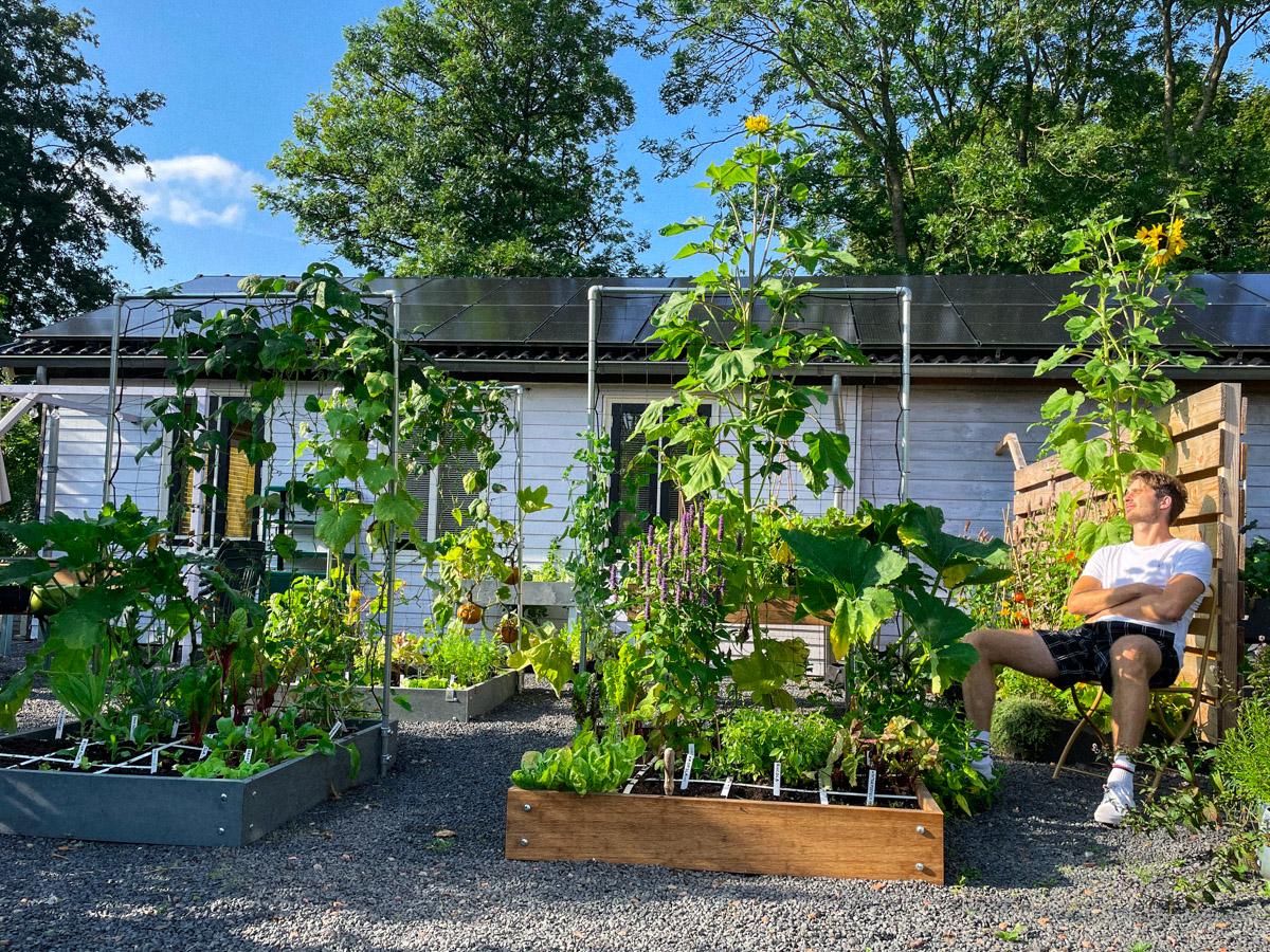 blog_-tadaa-new-garden-box-made-of-bamboo00007.jpg