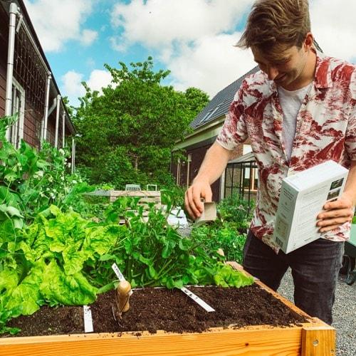 MM-Plantfood sprinkled on empty garden mini plots