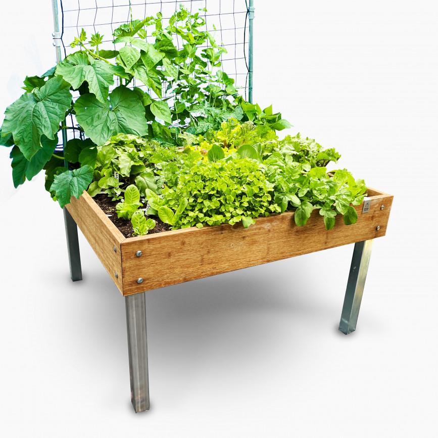 garden-box.jpeg