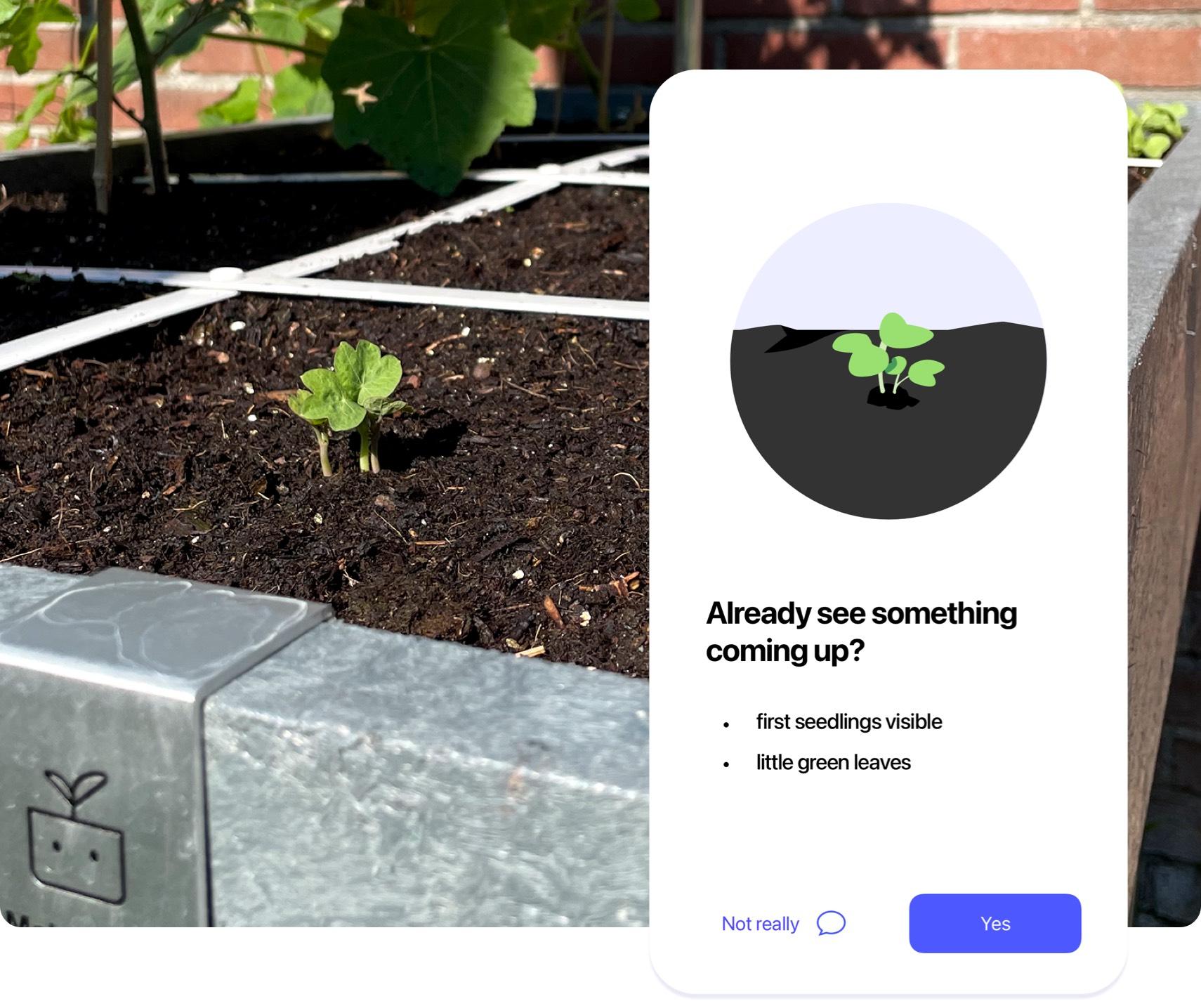 App-Planty-04.jpg