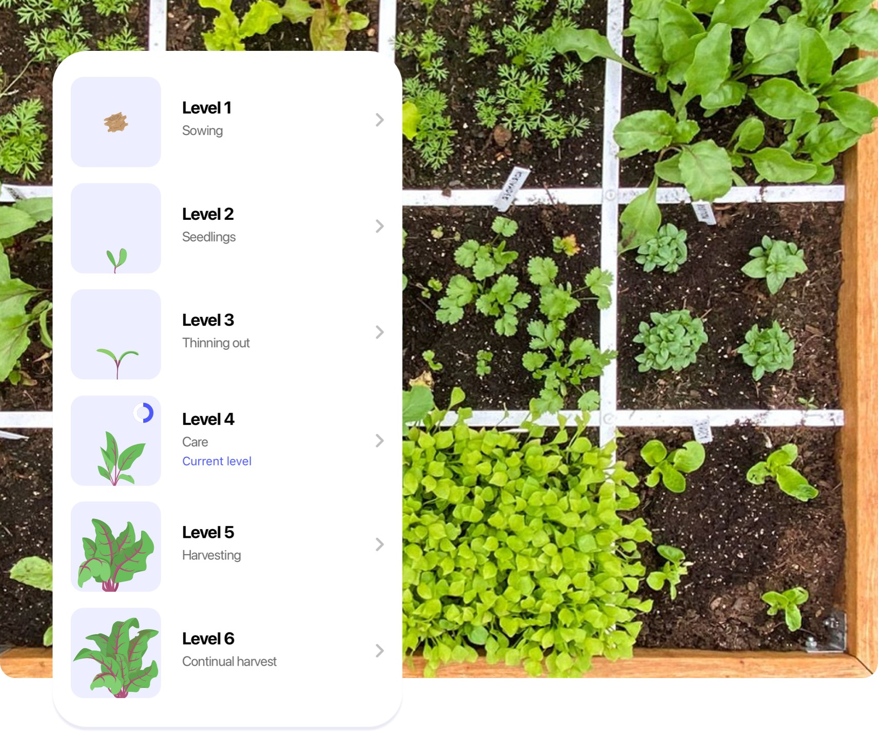 App-Planty-05.jpg