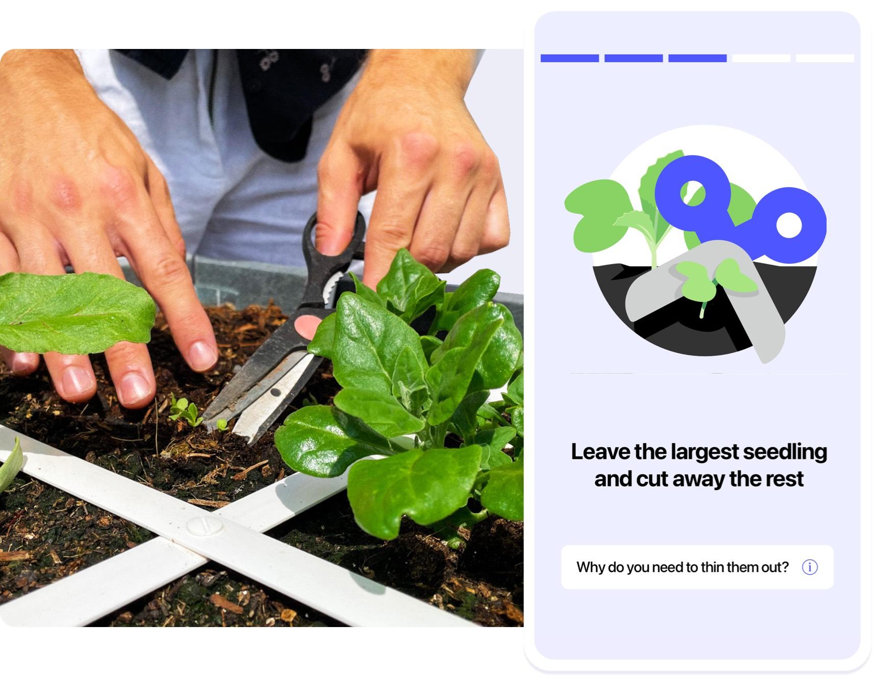 App-Planty-06.jpg