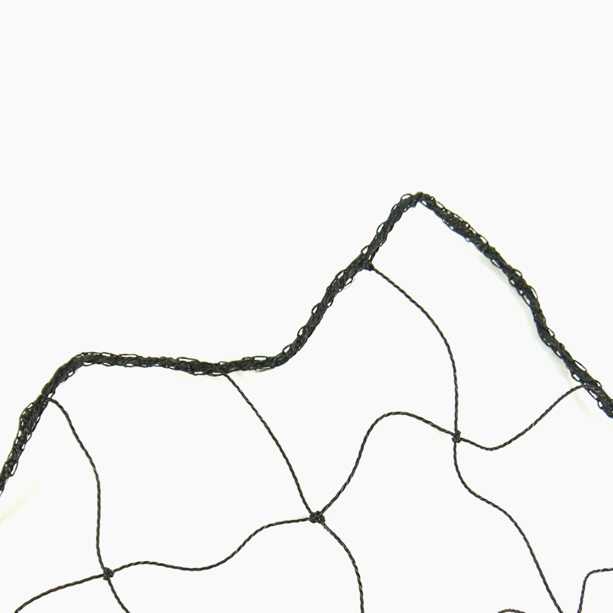 Net1-1-(1).jpg