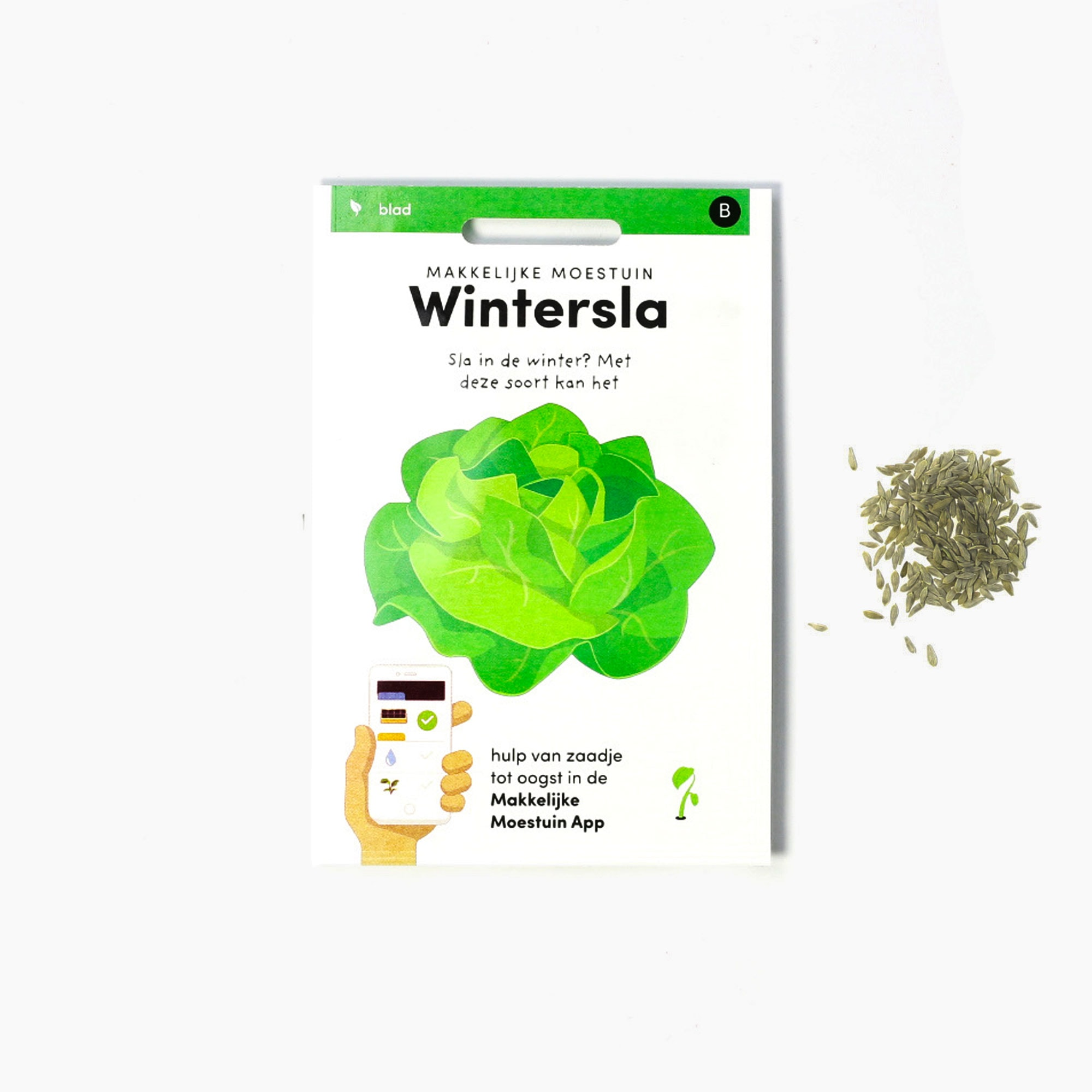 Wintersla-(1).jpg