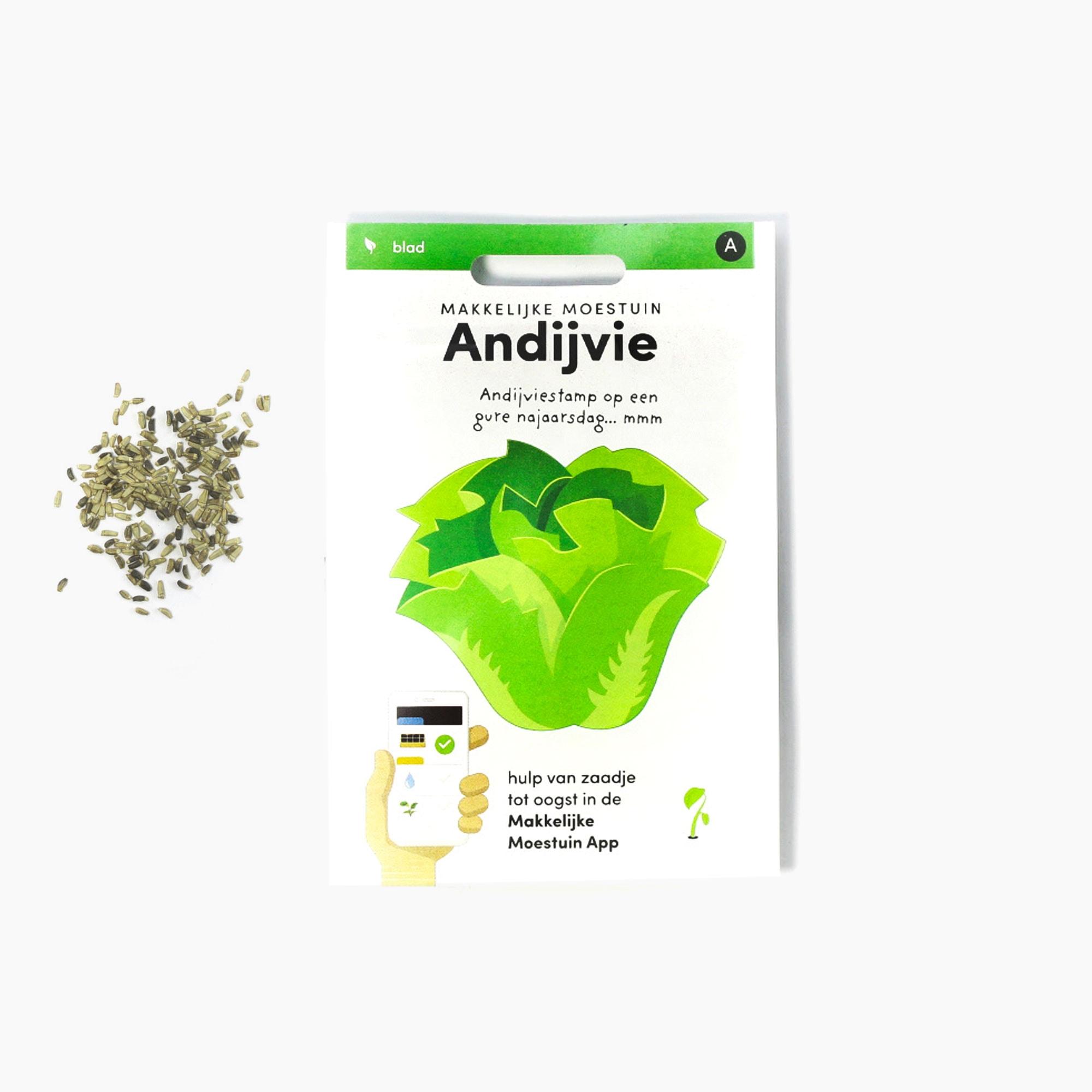 Andijvie1-1.jpg