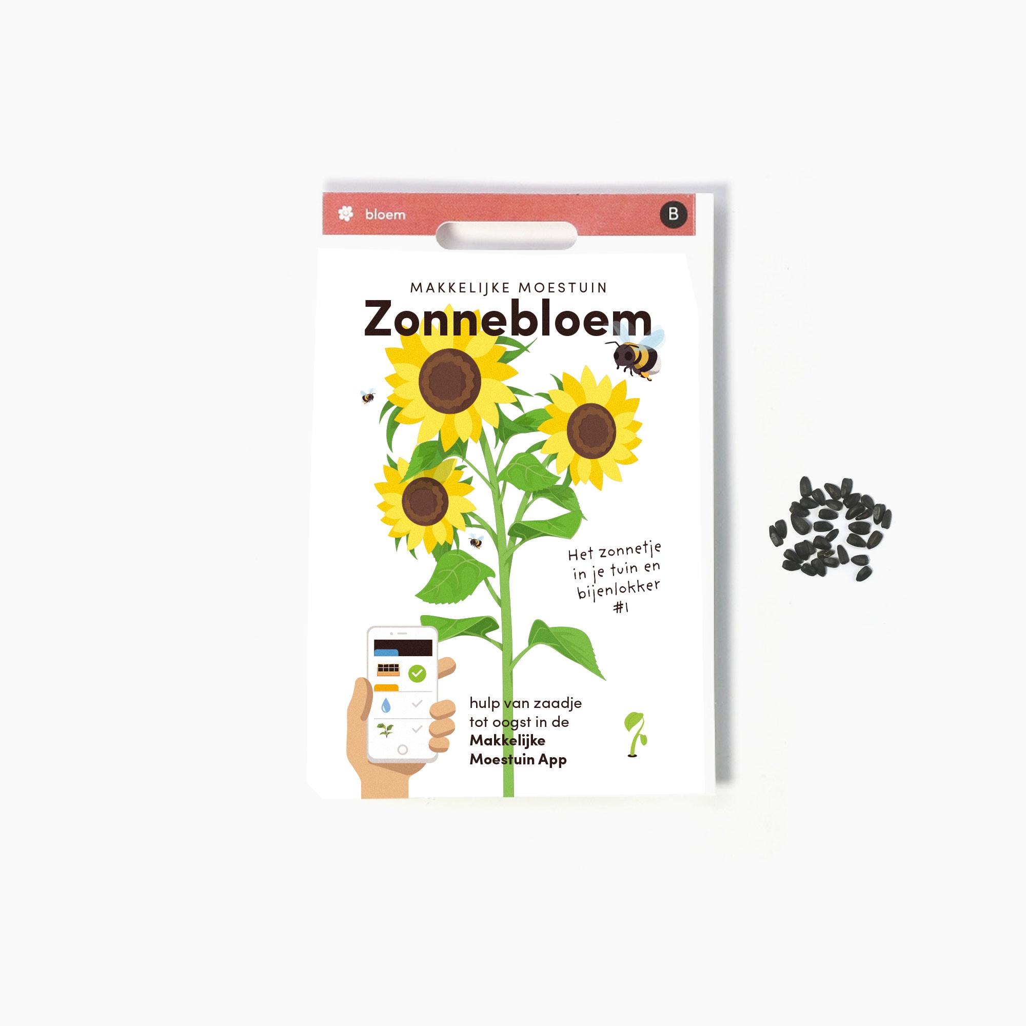Zonnebloem-(1).jpg