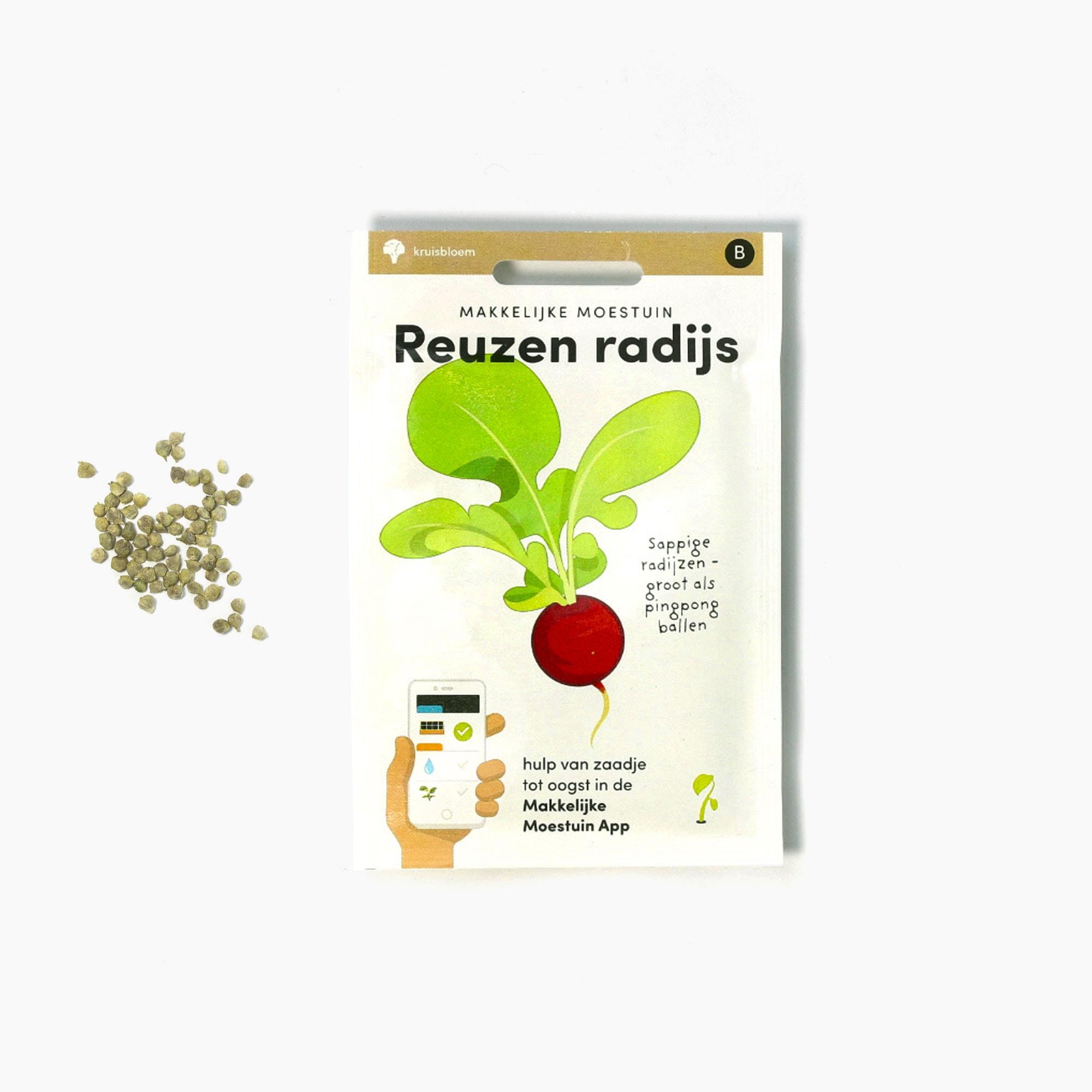 Radijs1.jpg